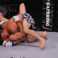 Hard Knocks 27 quick results from Calgary