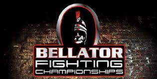 Bellator 78 – Fairborn, Ohio