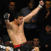 UFC announces that Lyoto Machida will fight champion Chris Weidman at UFC 173