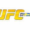 "UFC Fight Night Sweden: Gustafsson and ""Rumble"" Johnson to fight for number-one contenders spot"
