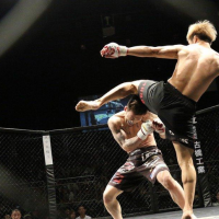 Top MMA Fighters Canada has given to the UFC