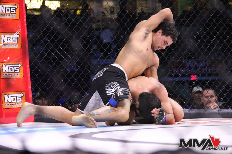 Score Fighting Series Sarnia fight photos