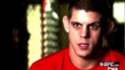 ufc-155-joe-lauzon