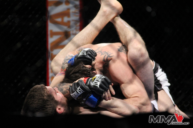 Provincial Fighting Championships 2 photo gallery